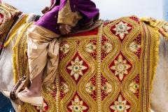 emily-shas-wedding10