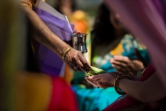 emily-shas-wedding24