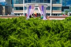 emily-shas-wedding25